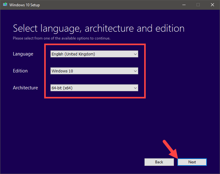Download windows 10 iso - select options and click next